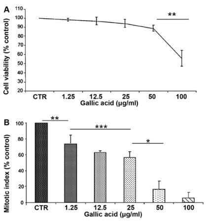 mtt法检测不同没食子酸浓度下的细胞存活率;b